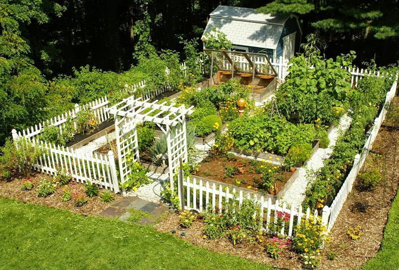 Recommended Tools For Building An Eco Garden At Home Eco Garden